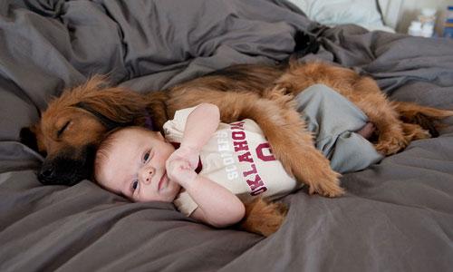 penyakit bayi