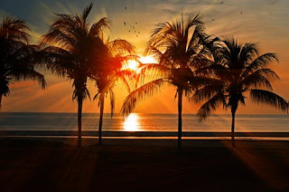 Palm Beach, Malaysia