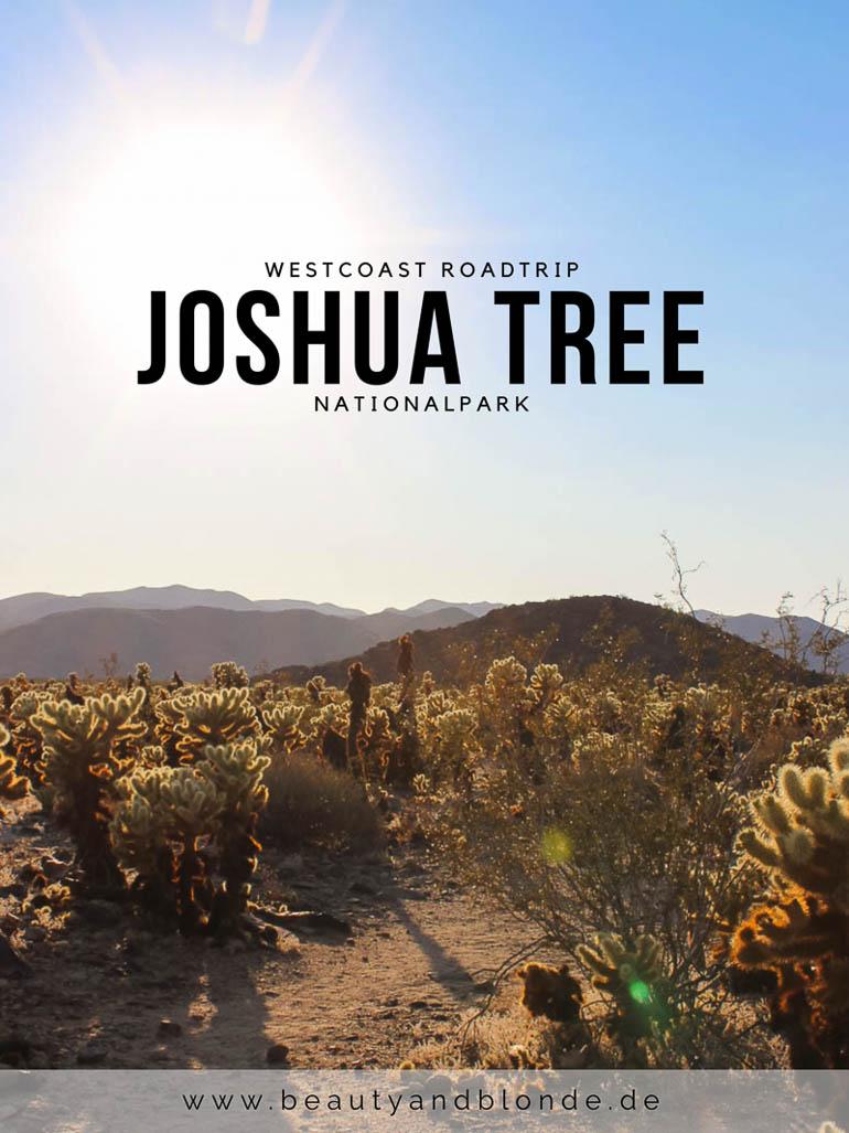 Westcoast USA Roadtrip <br /> Joshua Tree Nationalpark