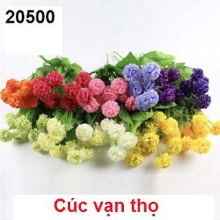 Phu kien hoa pha le tai Quan Thanh