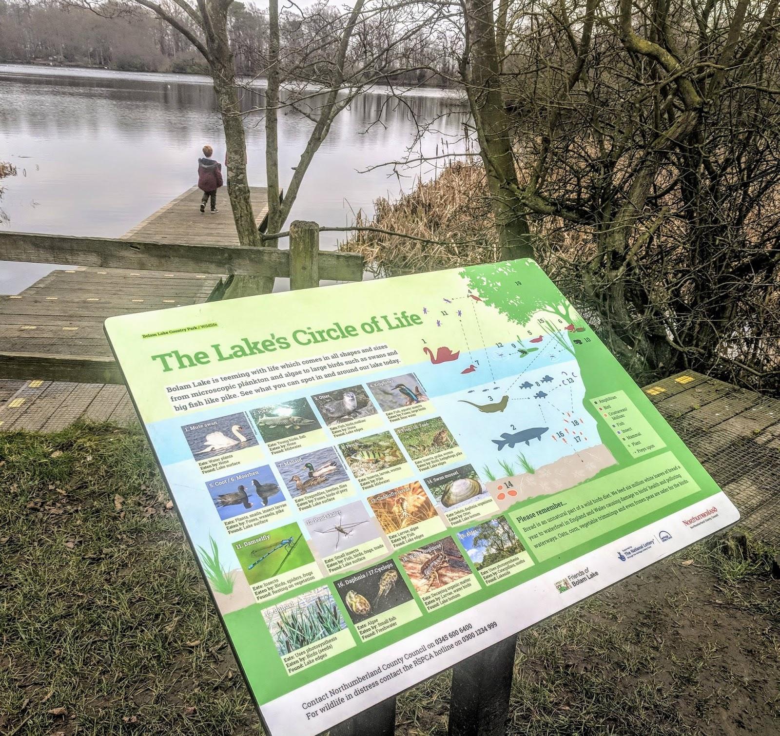 A Guide to Visiting Bolam Lake, Northumberland  - circle of life sign