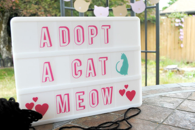Adopt a cat mini party by Fizzy Party