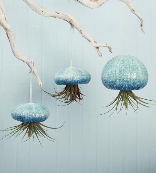 Hanging Urchin Planters