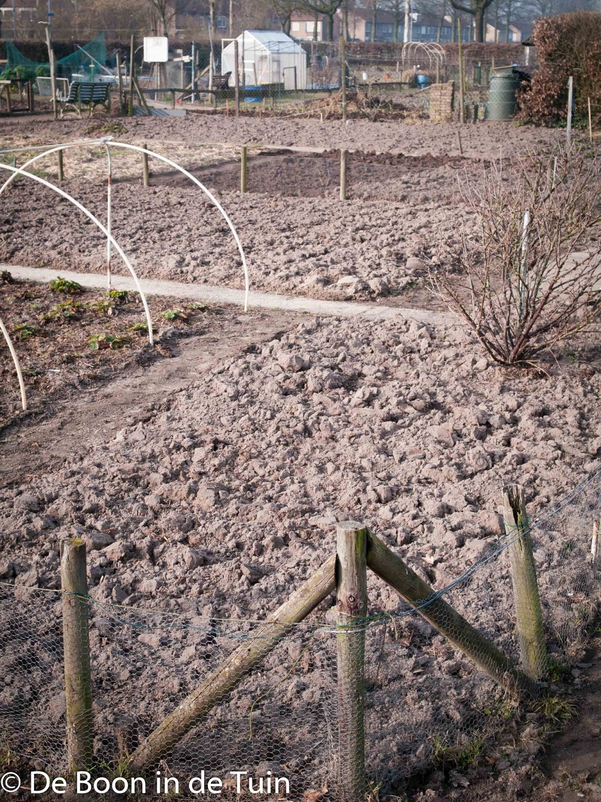 spitten ploegen volkstuin moestuin bodemleven