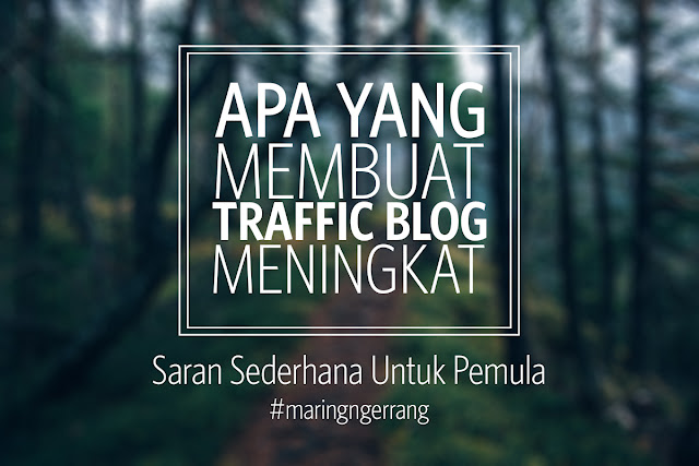 Apa Yang Membuat Blog Punya Traffic Tinggi? - Saran Untuk Pemula