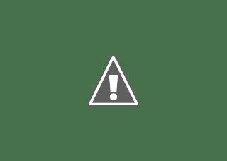 YARA, Sales Agronomist