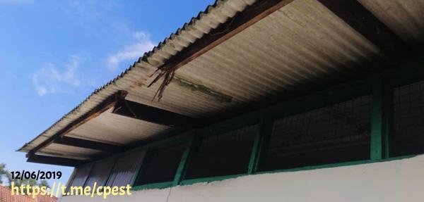 Kerosakan Bumbung Rumah Di Makan Anai-Anai