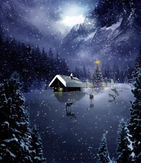 Bonnes fêtes de fin d'année - Page 2 Christmas-1827379_640