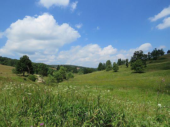 Widok w dół doliny.