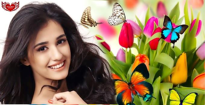 Bollywood Celebrity Disha Patani 4K HD Wallpapers & Photo Shoots