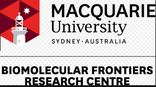 macquire vice chancellor international scholarship