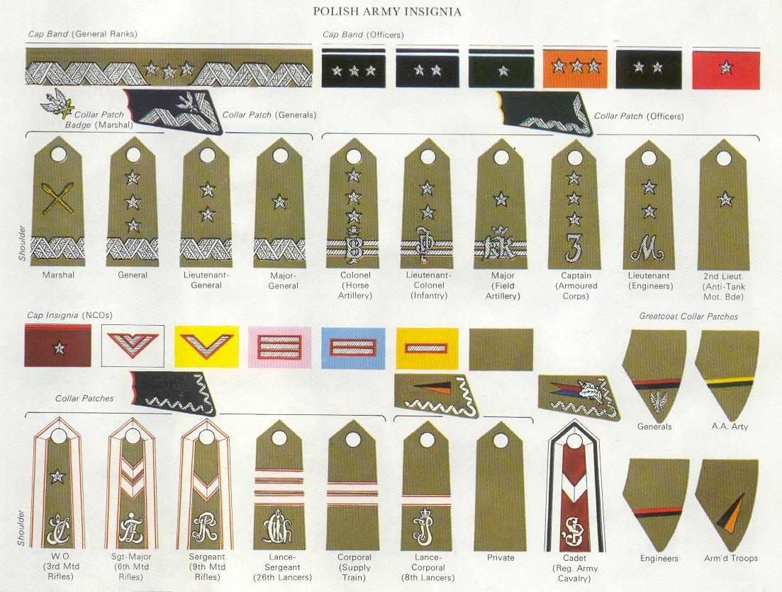 Ww2 German Military Ranks – Wonderful Image Gallery