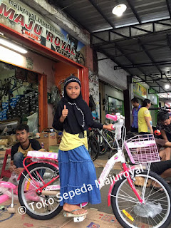 "Sepeda Anak Perempuan 20"" Wimcycle Strawbery"