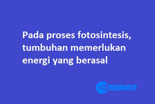 Pada proses fotosintesis, tumbuhan memerlukan energi yang berasal