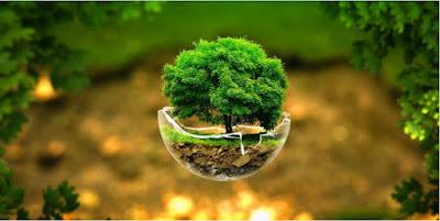 Bangladesh Environment Act & Rules PDF (পরিবেশ সংরক্ষণ সংক্রান্ত আইন, বিধিমালা)
