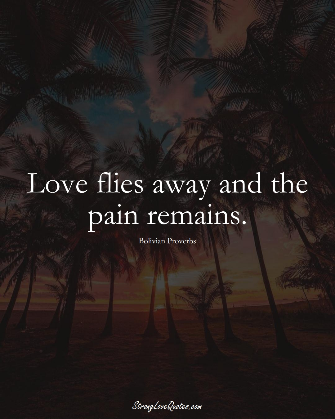Love flies away and the pain remains. (Bolivian Sayings);  #CaribbeanSayings