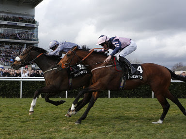 Winning racing tips, betting tips, racing tips,