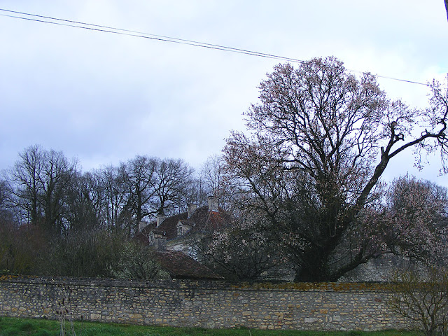 Property on the edge of Le Grand Pressigny.  Indre et Loire, France. Photographed by Susan Walter. Tour the Loire Valley with a classic car and a private guide.