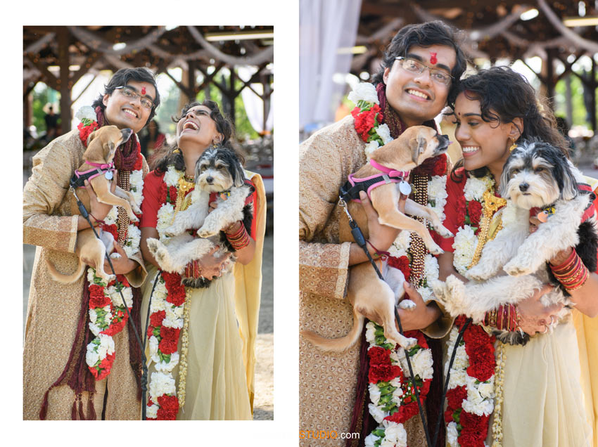 Indian Wedding Photography with Pets Dogs SudeepStudio.com Ann Arbor Indian Wedding Photographer