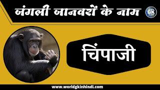 Chimpanzee Animal Name In Hindi