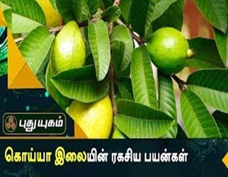 Maruthuva Payankal | Puthuyugam Tv
