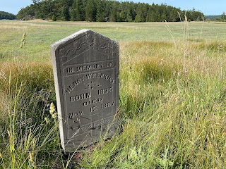 A tombstone on the Henry Island preserve.