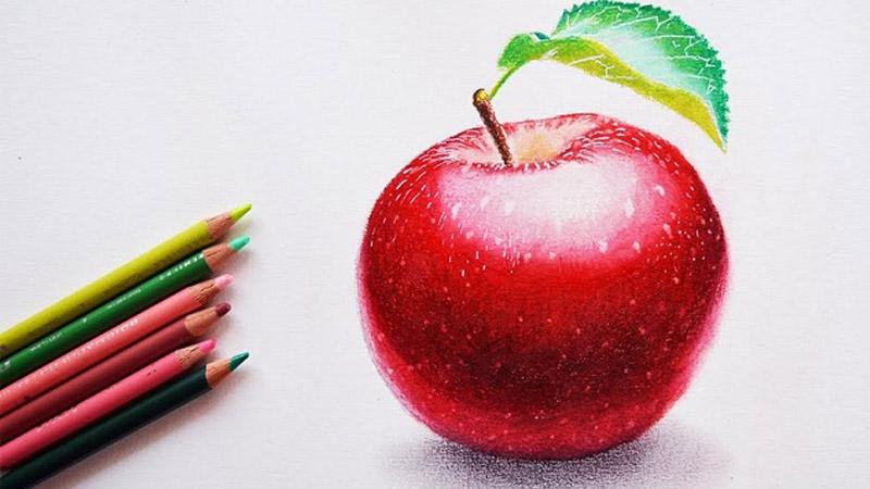 Belajar Gambar Mewarnai Buah Apel Bersama Anak