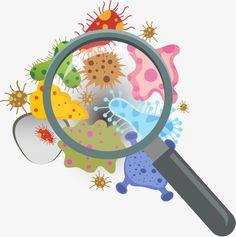 Virology as a Medical Subject or Discipline