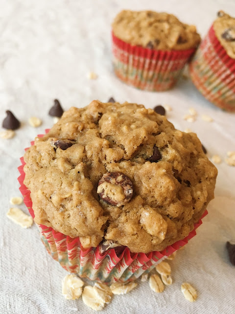 oatmeal chocolate muffins