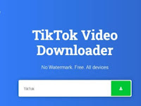 Cara Download Video Tiktok tanpa Watermark Offline dan Online