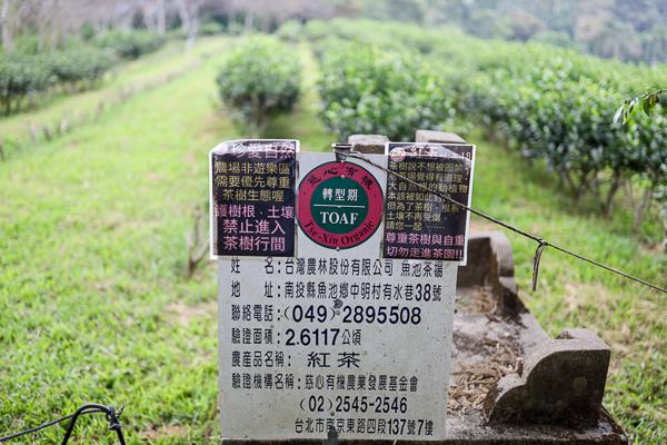 日月老茶廠 台灣農林魚池日月潭紅茶觀光工廠 免費參觀 近日月潭