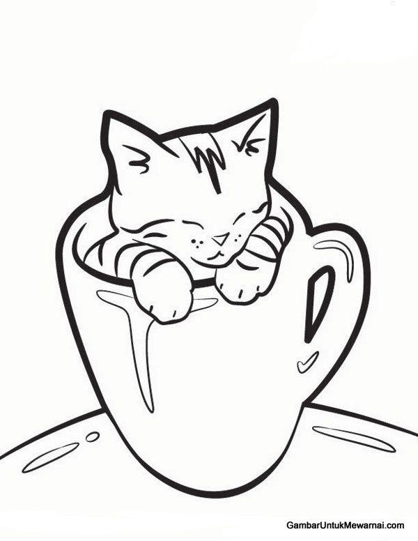 gambar kucing hitam putih keren