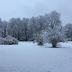 Sutra u našoj zemlji snijeg