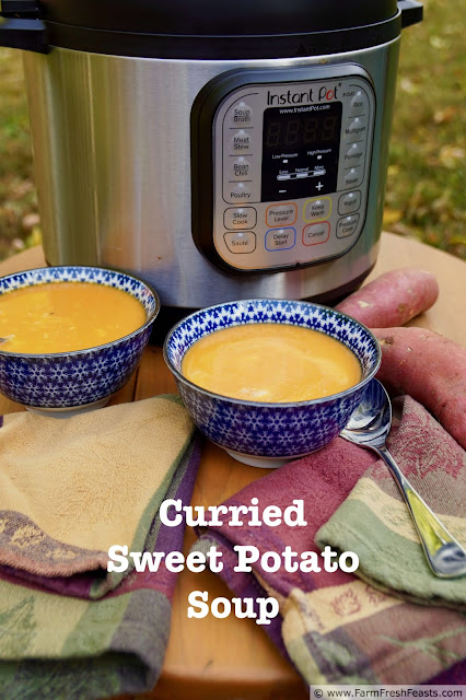 Smooth and creamy, with warming Thai spices, this vegan sweet potato soup cooks up quickly in the Instant Pot for an easy first course or light meal.