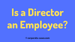 is a director an employee of a limited company