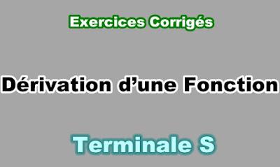 Exercices Corrigés de Dérivation d'une Fonction Terminale S PDF