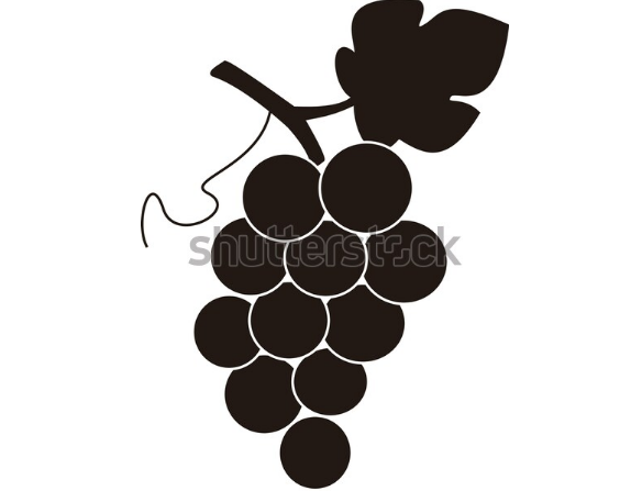 illustration definition grape logos