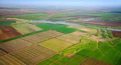 Верховная Рада разрешила продажу земли иностранцам и снятие плодородного слоя