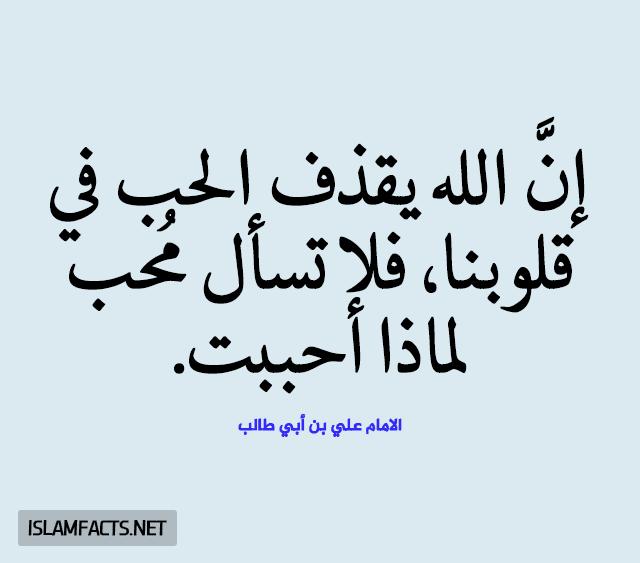 مولد الامام علي,استشهاد الامام علي,زيارة الامام علي,الامام الرضا,زيارة امير المؤمنين