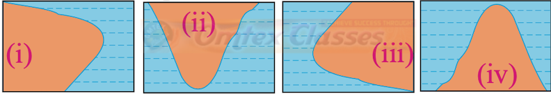 Which of the following shapes show the coastal part of Brazil correctly?