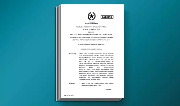 PP Nomor 70 Tahun 2020 Tentang Tata Cara Pelaksanaan Tindakan Kebiri Kimia, Pemasangan Alat Pendeteksi Elektronik, Rehabilitasi, dan Pengumuman Identitas Pelaku Kekerasan Seksual Terhadap Anak