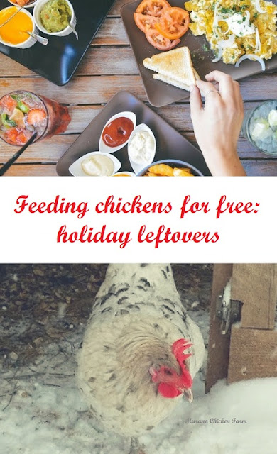 chicken treats | leftovers