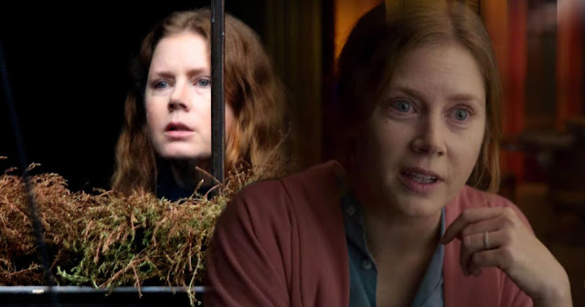 Hot New Movie Trailers 'The woman in the window'