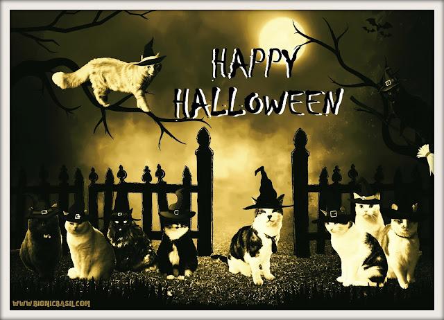 Basil & The B Team Happy Halloween ©BionicBasil®