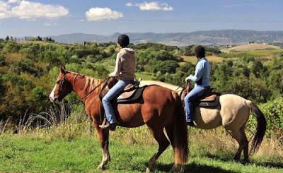 Passeggiate a cavallo guidate nella zona di Trento...Il Trentino da scoprire