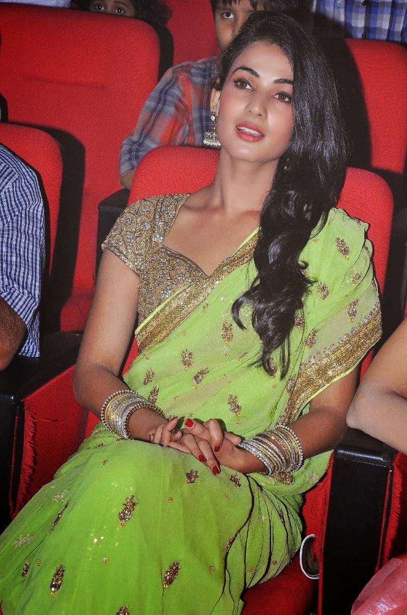 Tamanna Hd Wallpapers Free Download Sonal Chauhan Hot In Saree Hd Wallpapers 2014 Salman