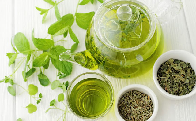 Why green tea is important?
