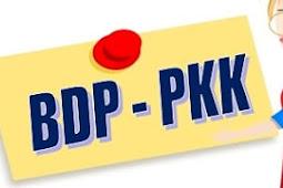 KI KD Produk Kreatif dan Kewirausahaan (PKK) - Bisnis Daring dan Pemasaran (BDP)