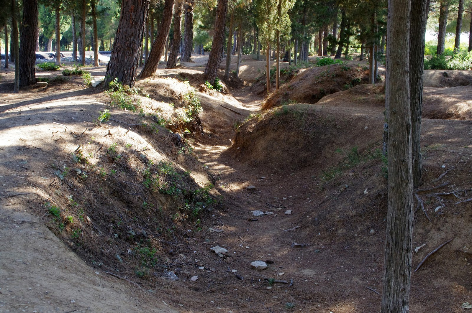 Trenches at Gallipoli