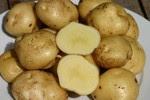 kaskus-forum.blogspot.com - 10 makanan termahal di dunia